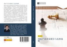国际产业市场细分与选择战略 kitap kapağı
