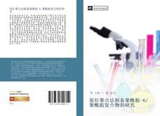 Capa do livro de 原位聚合法制备聚酰胺-6/聚酰胺复合物的研究