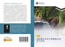 Capa do livro de 退化湖滨带水生植物恢复技术与实践
