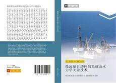 Bookcover of 微流量自动控制系统及水力学关键技术
