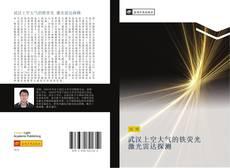 武汉上空大气的铁荧光 激光雷达探测的封面