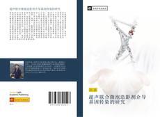 Capa do livro de 超声联合微泡造影剂介导基因转染的研究