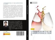Capa do livro de 宁夏银起集团有限公司下属企业绩效评价体系及方法研究