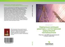 Обложка Корпусные кипящие реакторы с естественной циркуляцией теплоносителя