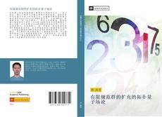 有限规范群的扩充的拓扑量子场论 kitap kapağı