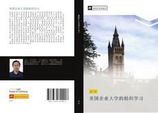 Capa do livro de 美国企业大学的组织学习