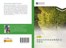 Buchcover von 洛南县农村劳动交换的社会学研究