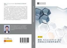 梯度 NiCoCrAlYSiB 涂层的制备及其腐蚀性能研究的封面