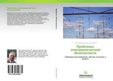 Проблемы электромагнитной безопасности的封面