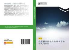 壳聚糖改性粘土治理水华的研究与应用 kitap kapağı