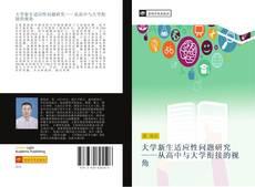 大学新生适应性问题研究——从高中与大学衔接的视角的封面