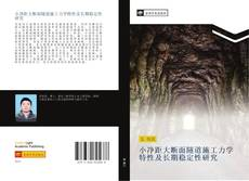 小净距大断面隧道施工力学特性及长期稳定性研究的封面