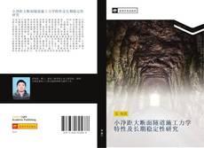 Bookcover of 小净距大断面隧道施工力学特性及长期稳定性研究