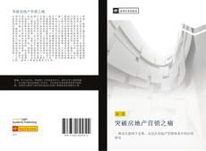 Bookcover of 突破房地产营销之痛
