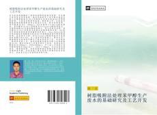 Buchcover von 树脂吸附法处理苯甲醇生产废水的基础研究及工艺开发