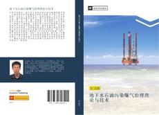 地下水石油污染曝气治理理论与技术 kitap kapağı