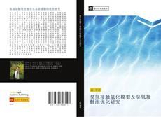 Portada del libro de 臭氧接触氧化模型及臭氧接触池优化研究