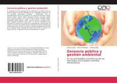 Copertina di Gerencia pública y gestión ambiental