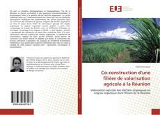 Borítókép a  Co-construction d'une filière de valorisation agricole à la Réunion - hoz