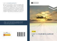 Capa do livro de CAST工艺短程硝化反硝化研究