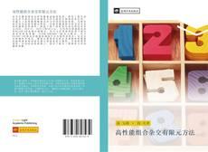 Buchcover von 高性能组合杂交有限元方法