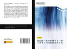 Bookcover of 溶菌酶纤维聚集体和非纤维多聚体结构的红外光谱研究