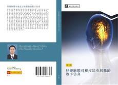 Bookcover of 经硬脑膜对视皮层电刺激的数字仿真