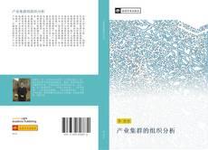 Buchcover von 产业集群的组织分析