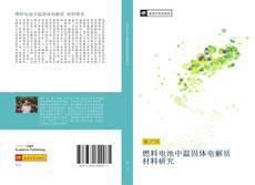 Bookcover of 燃料电池中温固体电解质 材料研究