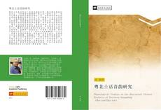 Bookcover of 粤北土话音韵研究