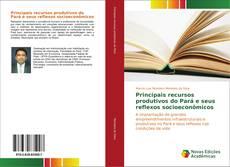 Обложка Principais recursos produtivos do Pará e seus reflexos socioeconômicos