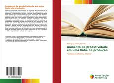Capa do livro de Aumento da produtividade em uma linha de produção