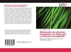 Portada del libro de Obtención de plantas haploides en trigo pan y triticale hexaploide