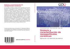 Síntesis y caracterización de nanopartículas cerámicas kitap kapağı