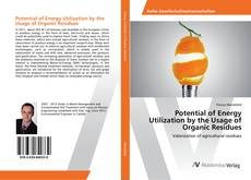 Bookcover of Potential of Energy Utilization by the Usage of Organic Residues