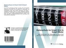 Capa do livro de Datenschutz im Smart Grid & Smart Meter