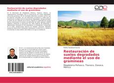 Bookcover of Restauración de suelos degradados mediante el uso de gramíneas
