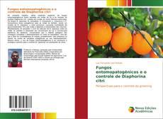 Capa do livro de Fungos entomopatogênicos e o controle de Diaphorina citri