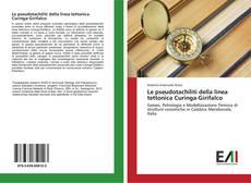 Copertina di Le pseudotachiliti della linea tettonica Curinga-Girifalco