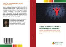 Tipos de solidariedade e normas constitucionais的封面