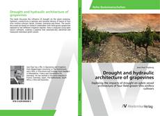 Bookcover of Drought and hydraulic architecture of grapevines