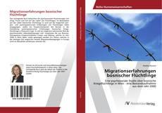 Bookcover of Migrationserfahrungen bosnischer Flüchtlinge