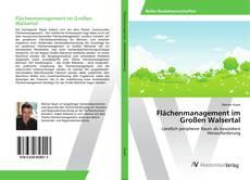 Capa do livro de Flächenmanagement im Großen Walsertal