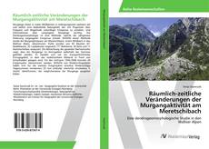 Couverture de Räumlich-zeitliche Veränderungen der Murgangaktivität am Meretschibach