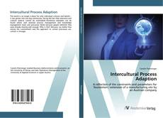 Intercultural Process Adaption的封面