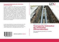 Buchcover von Transporte hidráulico de minerales (Mineroductos)