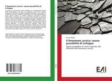 Capa do livro de Il fenomeno carsico: nuove possibilità di sviluppo