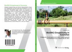 Buchcover von BioSNG Einspeisung in Gasnetze