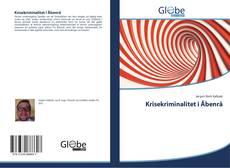 Portada del libro de Krisekriminalitet i Åbenrå