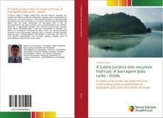 Bookcover of A tutela jurídica dos recursos hídricos: A barragem João Leite - Goiás